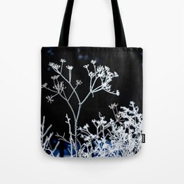 Frosted plant at cold winter day on black background Tote Bag
