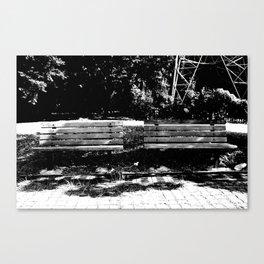 connection02 Canvas Print