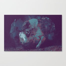 Distressed. Canvas Print