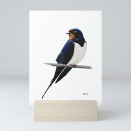 Barn swallow, Bird painting Mini Art Print