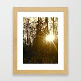Trail of Old Framed Art Print