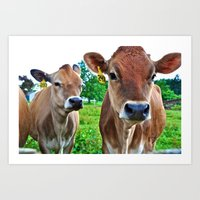 cows Art Prints featuring Cows by Chris Klemens