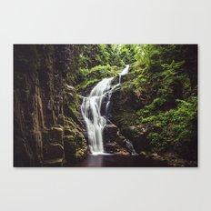 Wild Water Canvas Print