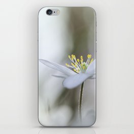 Adorable Wood Anemone... iPhone Skin
