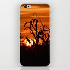 Silhouttes in a Sunrise iPhone & iPod Skin