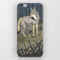 coyote iPhone & iPod Skins featuring Coyote by Lucan Joshua Jackson