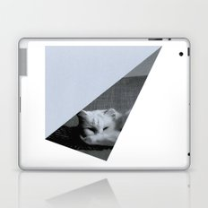 Ambrosia Laptop & iPad Skin