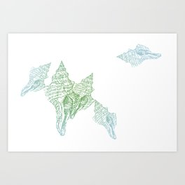 Shells Coloured Art Print