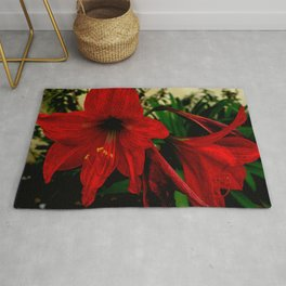 Blood red hibiscus Rug