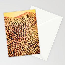 Oxidized Landscape Tangerine Stationery Cards