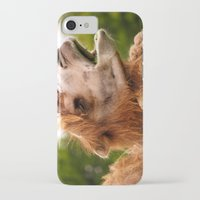 camel iPhone & iPod Cases featuring Camel by GardenGnomePhotography