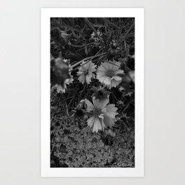 Nature finds a way Art Print