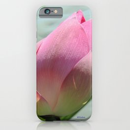 Lotus Bud in West Lake iPhone Case