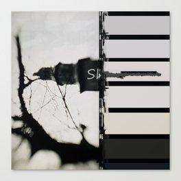 Marking The Artwork Canvas Print