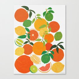 Citrus Harvest Canvas Print