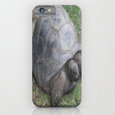tortoise Slim Case iPhone 6s