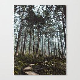 Trail through the trees Canvas Print
