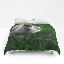Cute Duckling Walking on a Lawn Comforters