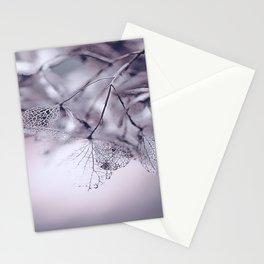 Dried Hydras Stationery Cards