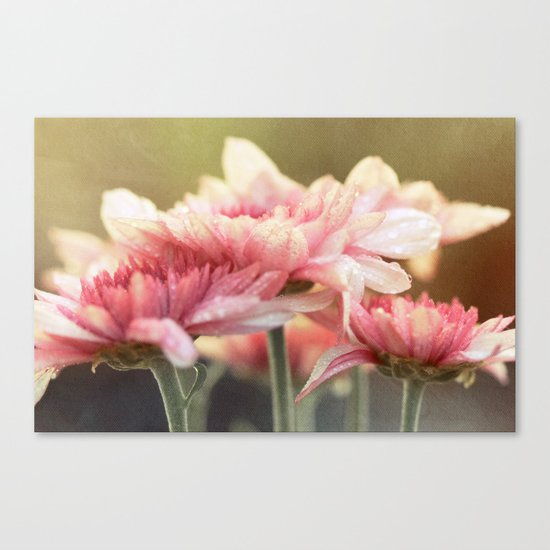 No matter the shadows, your presence is like sunlight on my face. Canvas Print