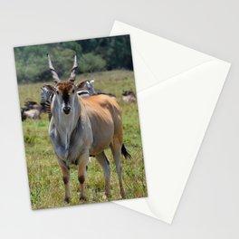 Eland Stationery Cards