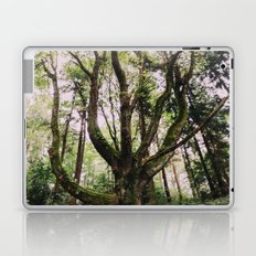 Forest Magic Laptop & iPad Skin