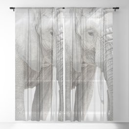 Elephant Photography | Minimalism | Animal | African Wildlife Sheer Curtain