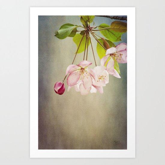 Spring's Promise Art Print
