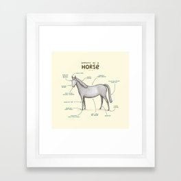 Anatomy of a Horse Framed Art Print