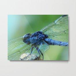Flying on Fairy Wings Metal Print