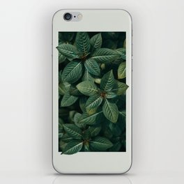 Growth III iPhone Skin