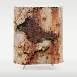 Colors of Rust / ROSTart Shower Curtain
