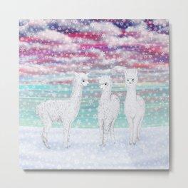 alpacas in the snow Metal Print