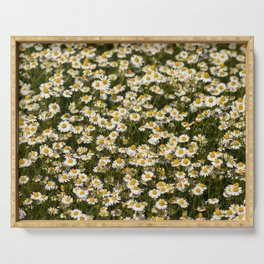 Chamomile. Serving Tray