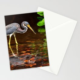 Tricolored Heron Fishing in Mangroves Stationery Cards