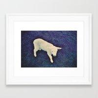 lamb Framed Art Prints featuring Lamb by Richard PJ Lambert