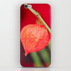 Little red flower iPhone & iPod Skin