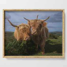 Highland Cows Serving Tray