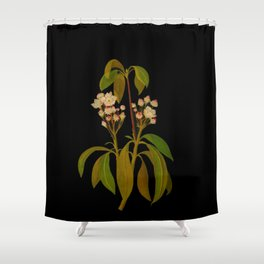 Kalmia Latifolia Mary Delany Vintage Floral Collage Botanical Flowers Black Background Shower Curtain