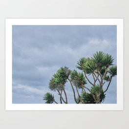 Palm tree in Newquay in strong winds Art Print