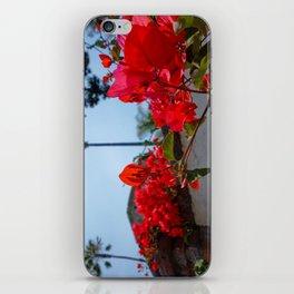 Red Bougainvillea | Mission San Juan Capistrano iPhone Skin