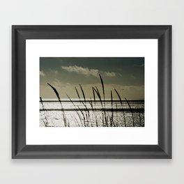 Grass and an Open Ocean Framed Art Print