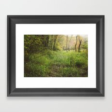Red Maple Woods (Instax - Instant Film) Framed Art Print