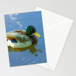 Ducks swimming Stationery Cards