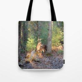 Deer Buck Cades Cove, TN Tote Bag