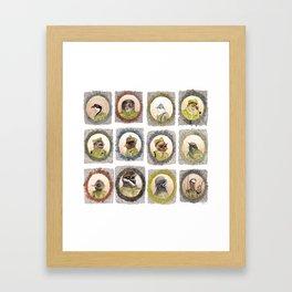 The Birdy Dozen Framed Art Print
