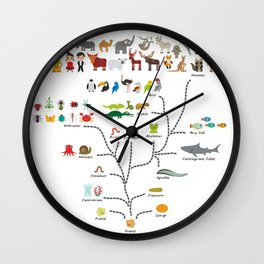 Evolution scale from unicellular organism to mammals. Evolution in biology, scheme evolution Wall Clock
