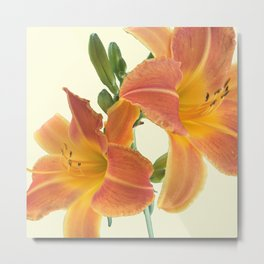 Garden Blooms - Orange Alone Metal Print