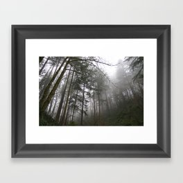 Forest Fog in Portland Framed Art Print