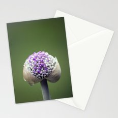Starting Allium Stationery Cards